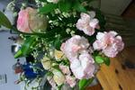 20110919_125001.jpg